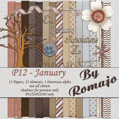 P12 - January