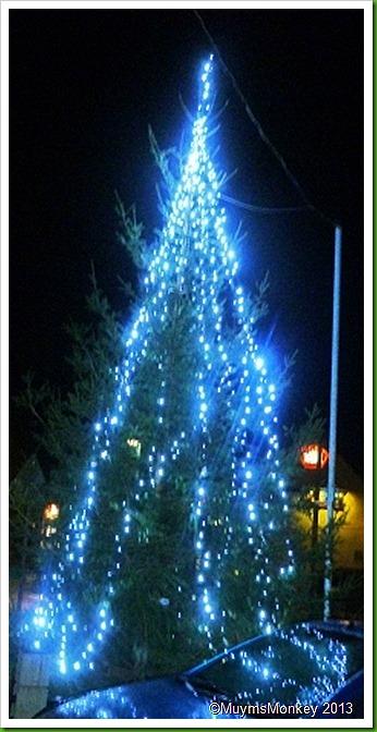 Bilbrook Christmas Tree 2012