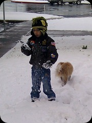 11-5-2011 first winter snow (3)