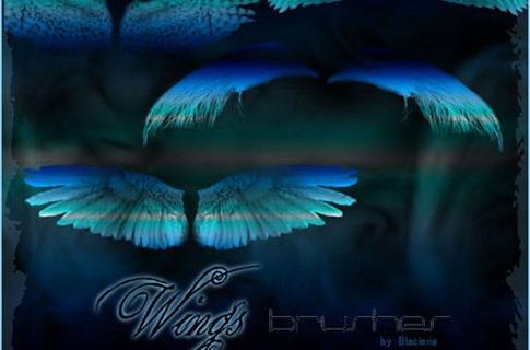 Pinceles de alas suaves