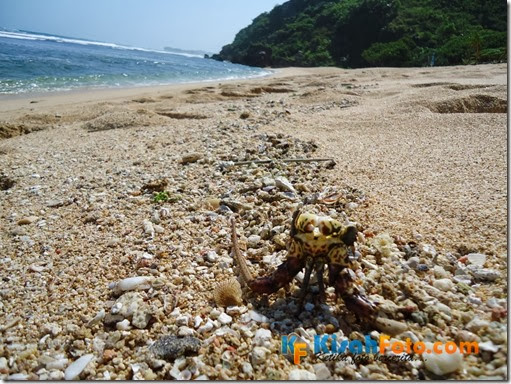 Pantai Pok Tunggal_0003