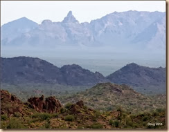 Ajo Mountains in background