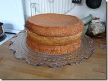 birds nest cake1c