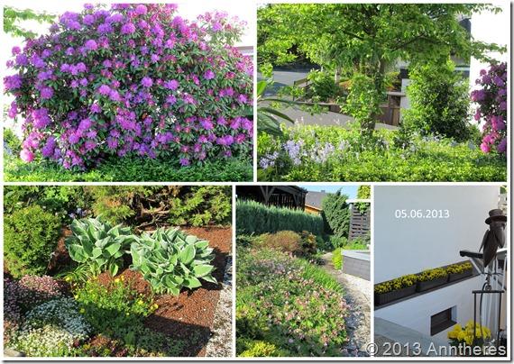 2013-Juni-Garten1