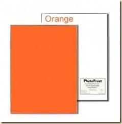 8x13 Orange Icing Sheet