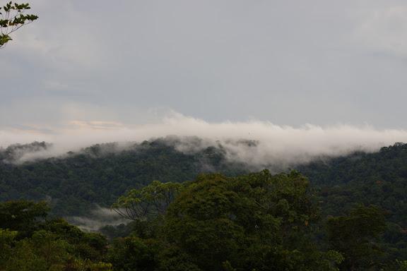 La Montagne de Cacao au coucher du soleil, depuis la piste de Coralie, 2 novembre 2012. Photo : J.-M. Gayman