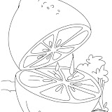 lime-coloring-page-4.jpg
