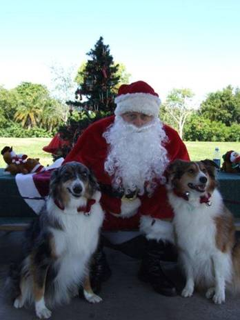 Susan W. shared this photo of Shadow Dancer and Princess Belle with Santa.  They love to go for long walks and chase ducks in the lake!