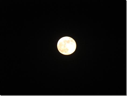 moon 015
