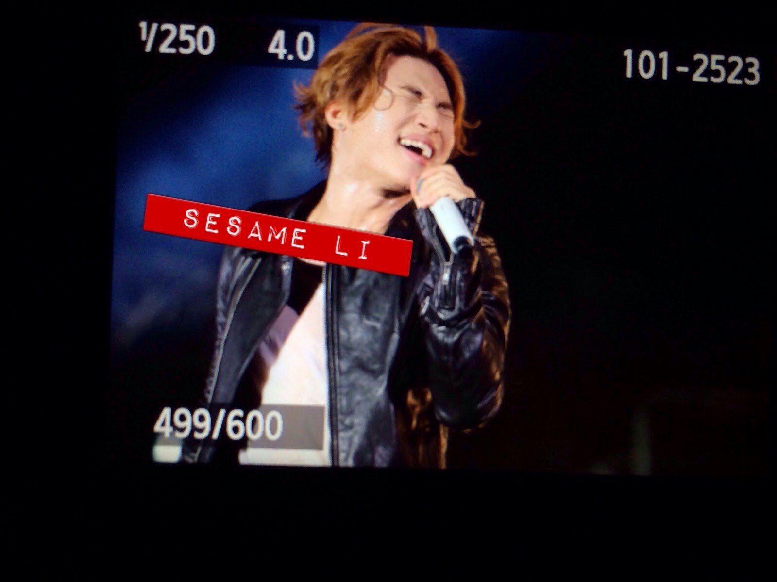 Dae Sung - YG Family Power Tour 2014 - 25oct2014 - Fan - sesame_li - 02.jpg