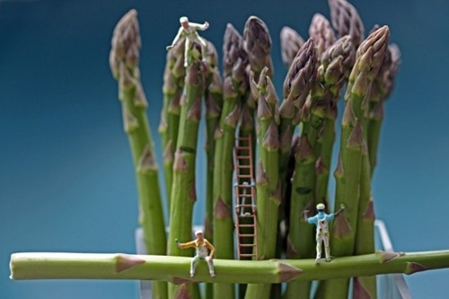 asparagus cleaners