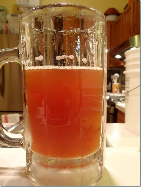 beer 07 (6b)