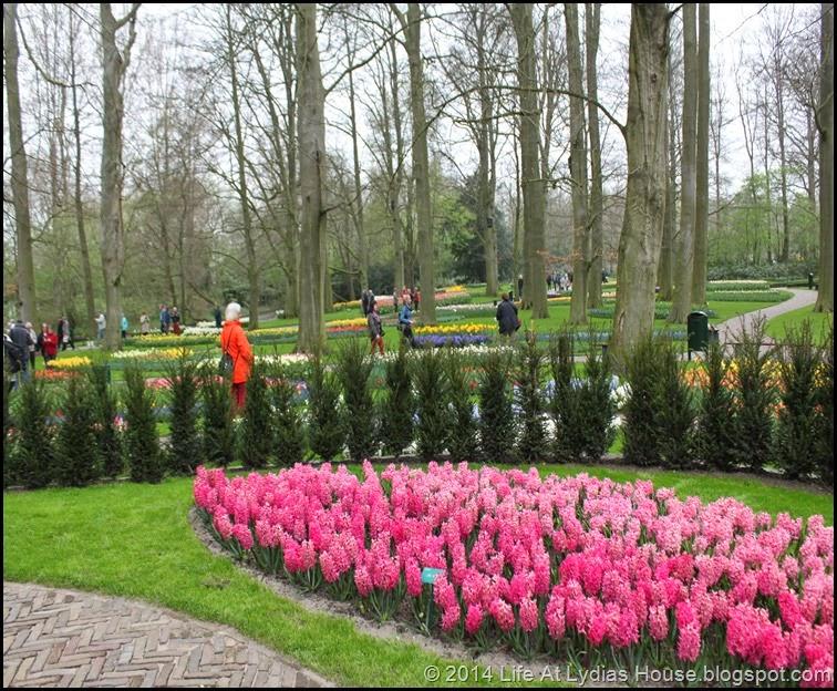 Keukenhof Gardens 18