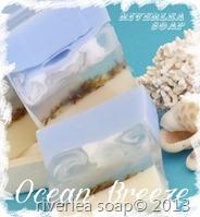 Ocean 1b sml