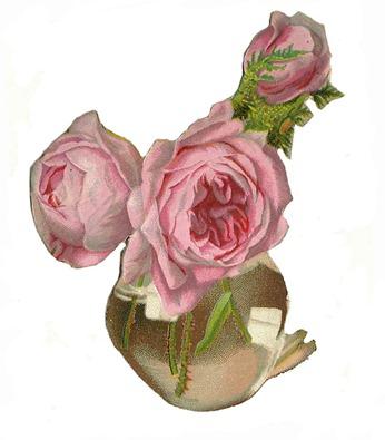 rosevicscrap