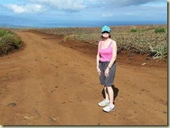 20150121_E Maui Gold Plantation (Small)