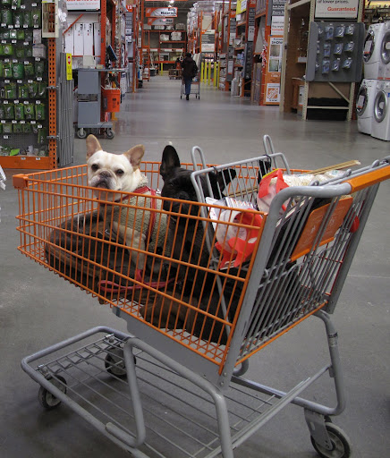 We LOVE The Home Depot - it is a great place to shop!!!