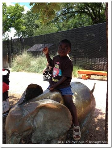 zoo May 19.2012 096