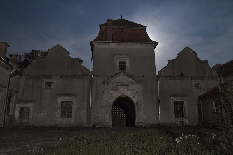 Свірзький замок, ніч