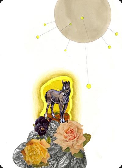 donkey_garden