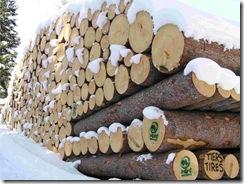 legno1