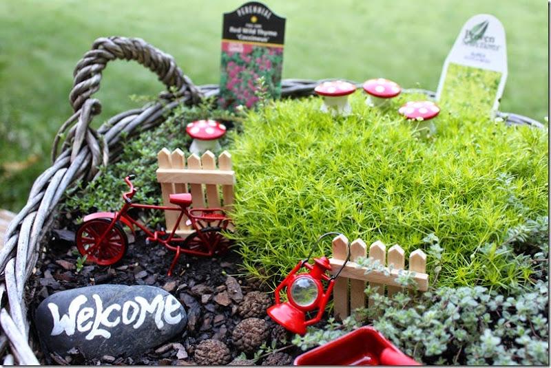 Fairy Garden 024