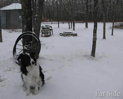 Snow Jan 14