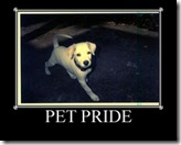 PETPRIDE