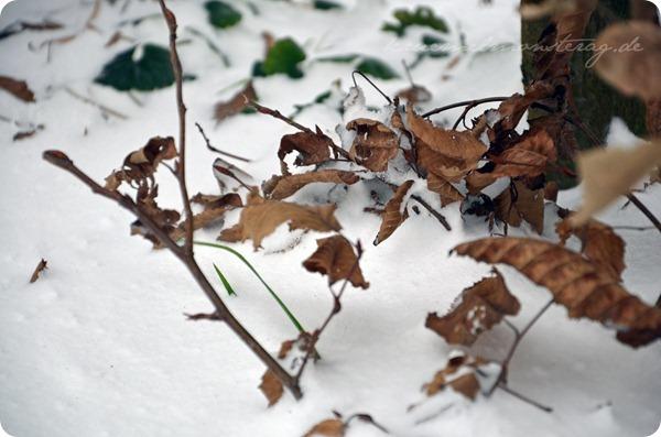 Schneesonntag 20zwölf (15)