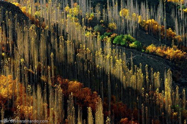 landscapes-paisagens-desbaratinando (40)