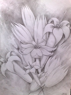 Flori albe desen in creion