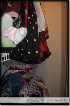 Childs Closet Before {A Sprinkle of This . . . . A Dash of That}