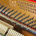 Schiedmayer_1889_06.jpg
