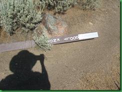 Dooly Knob Trail 140