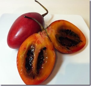 tomate-frances