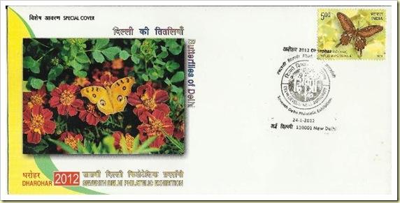 delhi2