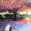 L\'arbre rose