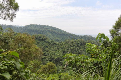 as_NcN5KFb4kyaK0FOEQDA