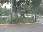 A blurry shot of the coyotes after which the neighborhood Coyoacan is named. (&quot;Coyoacan&quot; derived appropriately from a word meaning &quot;place where they have coyotes&quot;)