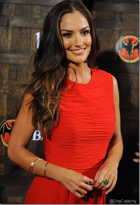minka-kelly-dress-hot-1