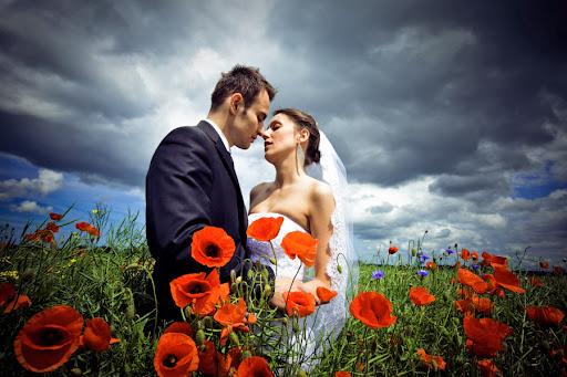 Dębno zdjęcia ślubne