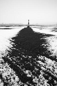 2013-02-25_1.jpg