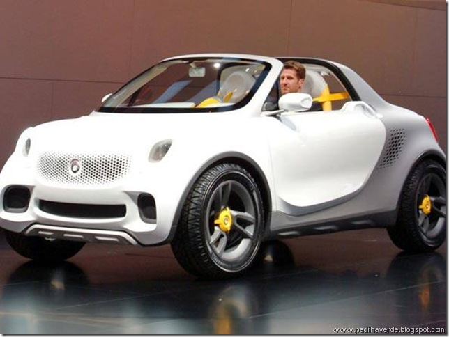 6size_590_Smart-For-Us-pickup