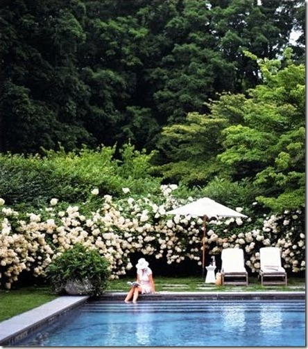 Limestone & Boxwoods The Perfect Pool - Martha Stewart Living