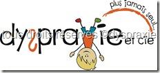 logo dyspraxie 2