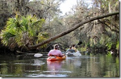 Hillsborough River SP Fl
