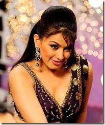 actress_hansika_in_saree_photos