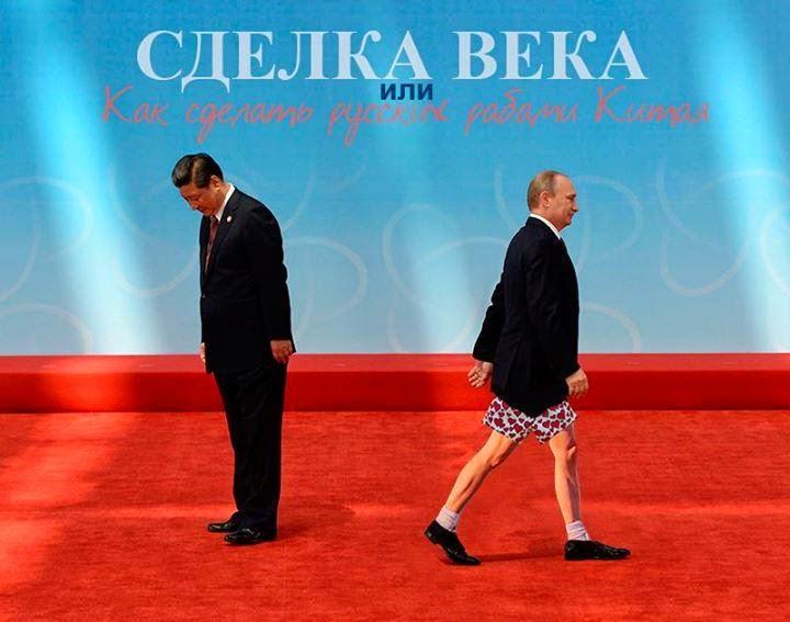 У Путина просят, чтобы Украина, РФ и ЕС провели дополнительные переговоры по газу в Милане - Цензор.НЕТ 8383