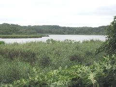 Plimoth Plantation 8.30.2-13 Eel River