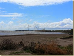 20140302_L Nic Wind turbines (Small)